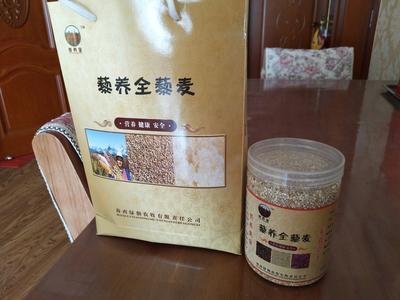 青海海西三色藜麦