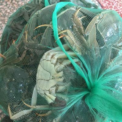 湖北荆州洪湖螃蟹 4.0两以上 公蟹