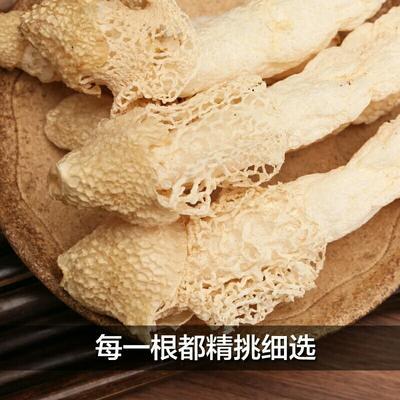 贵州毕节织金竹荪 特级