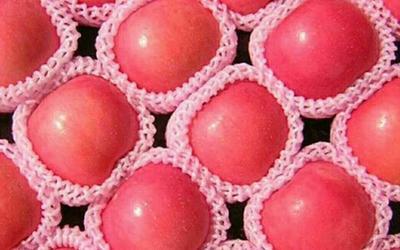 这是一张关于栖霞苹果 纸袋 条红 75mm以上的产品图片