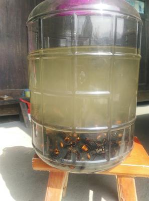 湖南怀化米酒