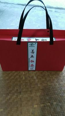 浙江温州高山红茶 礼盒装