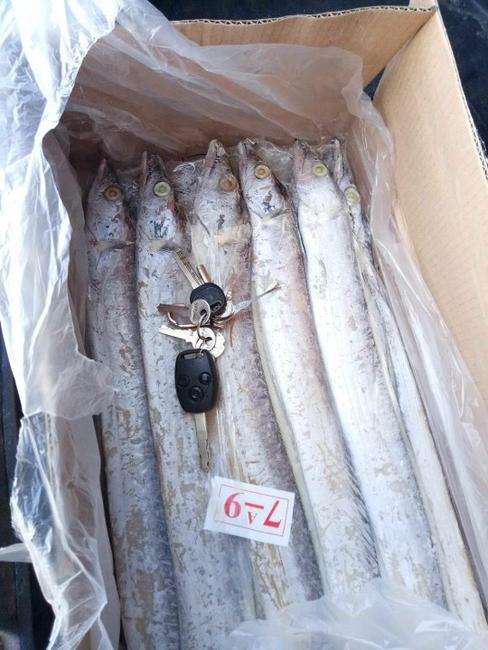 东海带鱼 野生 0.5公斤以下