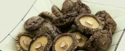 河南郑州野香菇干 袋装 1年以上