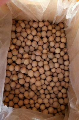 这是一张关于广西桂圆干的产品图片
