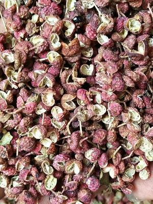 大红袍花椒  干花椒 自然晒干大量批发