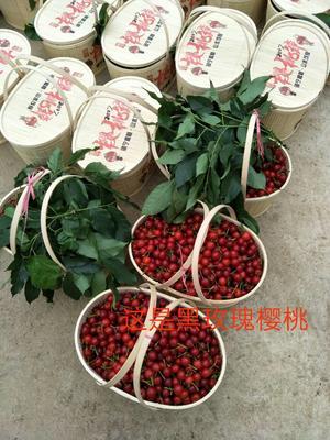 贵州安顺黑玫瑰樱桃 15-20mm 5g以下