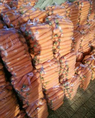 河南开封三红胡萝卜 10~15cm 3两以上 3cm以下