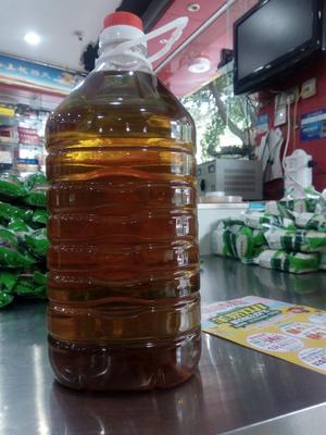 广西百色野生山茶油