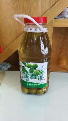 浙江绍兴青梅酒