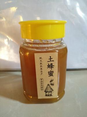 这是一张关于土蜂蜜 玻璃瓶装 100% 2年的产品图片