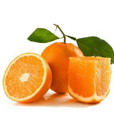 湖北宜昌秭归脐橙 70-75mm 4-8两 橙子 秭归脐橙
