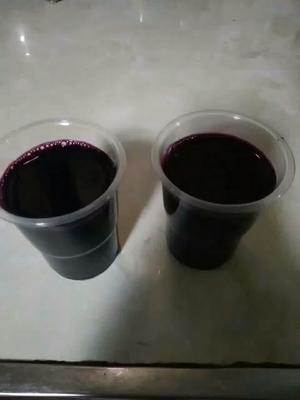 贵州黔南葡萄酒