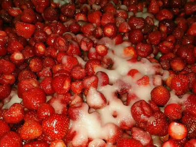 辽宁丹东草莓罐头 6-12个月