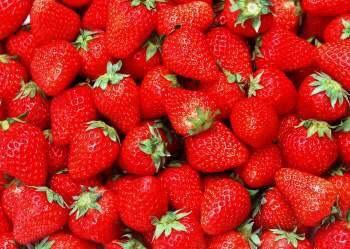 内蒙古自治区鄂尔多斯市准格尔旗美国甜查理草莓 20克以上