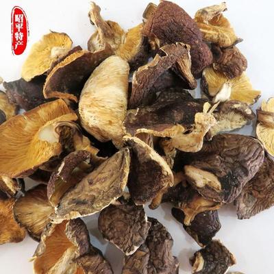 广西贺州野香菇干 袋装 1年