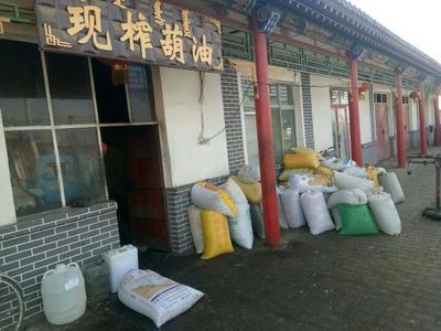 内蒙古自治区包头市土默特右旗晋亚7号