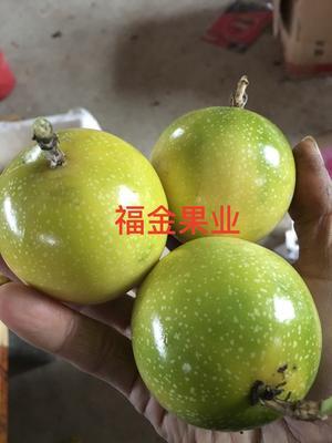广西桂林临桂县黄金百香果 80 - 90克