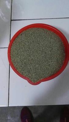 陕西榆林有机黑米