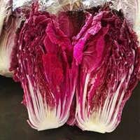山东省德州市临邑县紫白菜 2~3斤 净菜