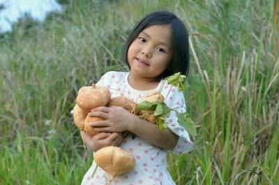 贵州省黔东南苗族侗族自治州黄平县贵州农村品种 500g以下