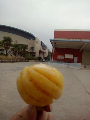 云南昆明泰国小菠萝 2.5 - 3斤