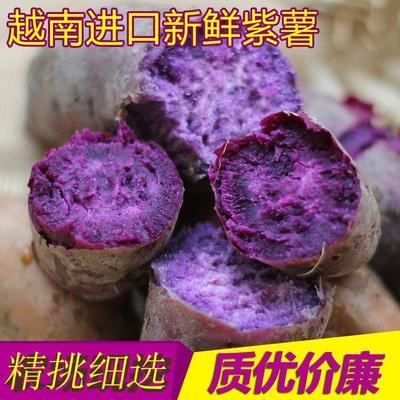 云南红河越南紫薯 3两以上