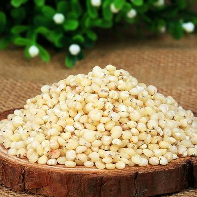 陕西榆林高粱米 霉变 ≤1% 1等品