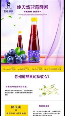 广东广州酵素饮品 玻璃瓶 6-12个月