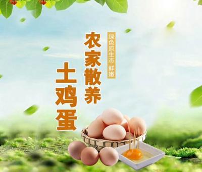山西太原土鸡蛋 食用 箱装