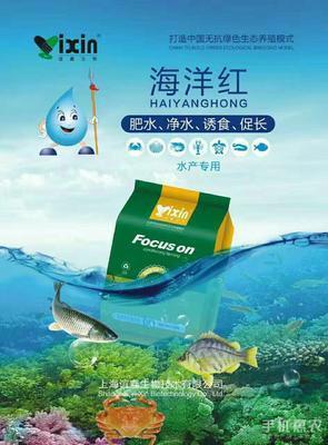 河南郑州金水区肥水王