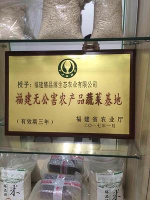 福建三明宁化县宁化糯薏米