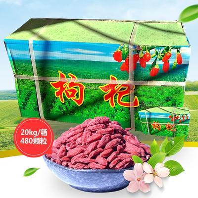 这是一张关于宁夏枸杞 特级 新货包邮宁夏枸杞480颗粒批发中宁枸杞的产品图片