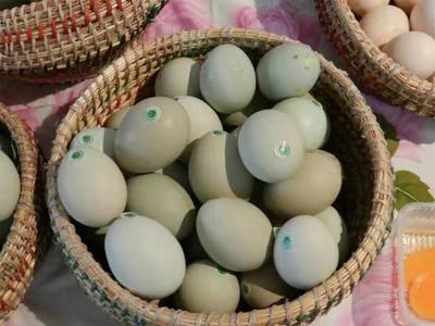 云南曲靖土鸡蛋 食用 箱装