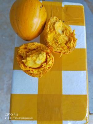 云南红河越南进口一级蛋黄果 150-180g