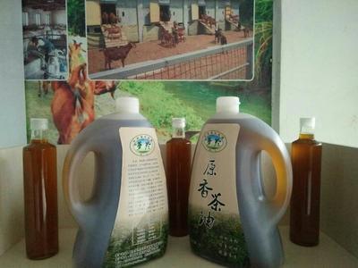 江西新余现榨山茶油