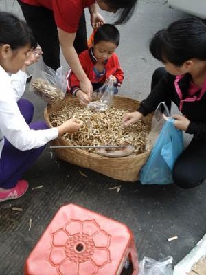 广东广州小鱼干 2-3个月