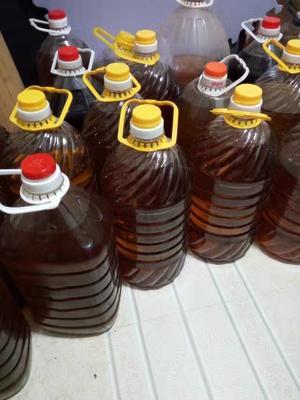 江西宜春茶叶籽油