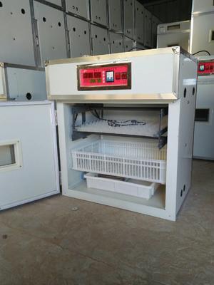 山东德州德城区养殖孵化机