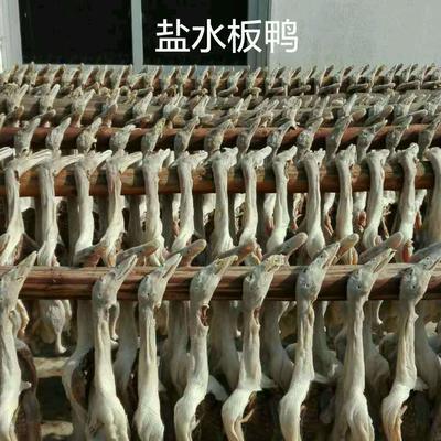 上海杨浦区茅山板鸭 散装