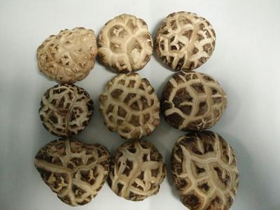 这是一张关于花菇干 礼盒装 1年以上的产品图片