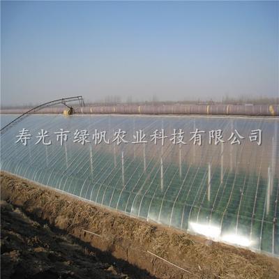山东潍坊PO薄膜 供应大棚塑料膜 EVA多功能膜 三防膜