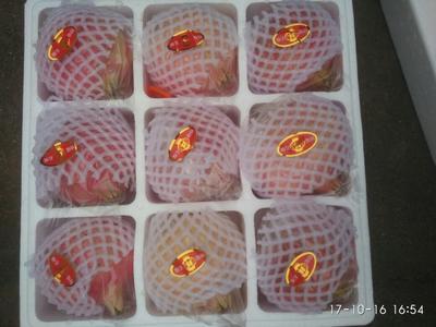 陕西西安临潼区临潼石榴 0.6 - 0.8斤