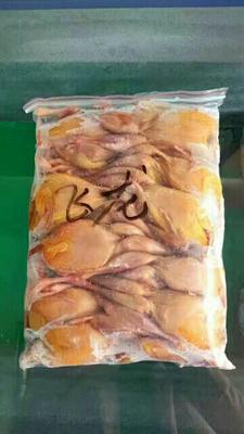 吉林省白城市大安市美国鹧鸪 0.5-0.6斤