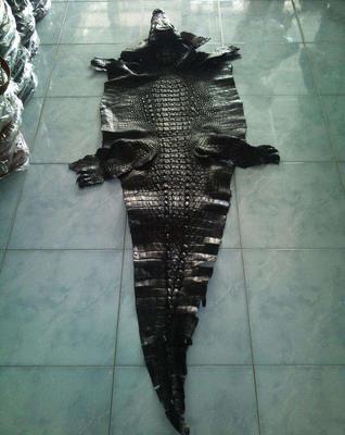 湖北咸宁鳄鱼皮