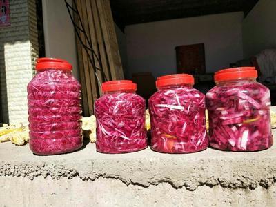 云南省怒江傈僳族自治州兰坪白族普米族自治县满身红萝卜 0.2~1斤