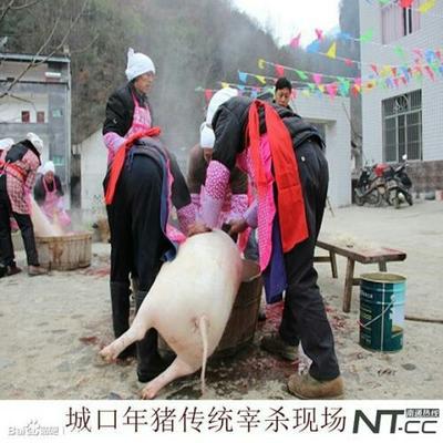 重庆城口土特产一一腊肉 散装 18-24个月