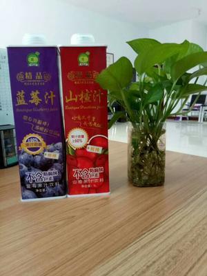 河北石家庄蓝莓饮料 纸盒装 12-18个月