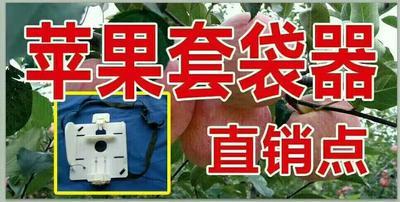 山东临沂苹果套袋辅助器