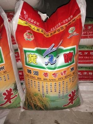 这是一张关于原阳大米 绿色食品 晚稻 一等品的产品图片